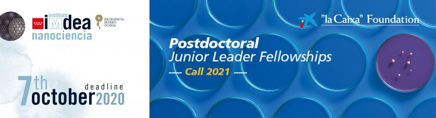 Becas de posdoctorado Junior Leader